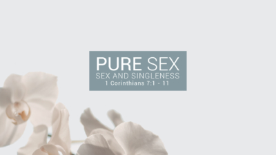Pure Sex - Sex and Singleness