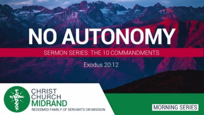 No Autonomy Website Image