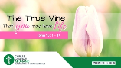 That You May Have Life - The True Vine - Sermon Final
